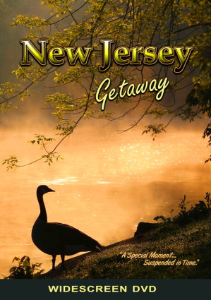 New Jersey DVD cover official crop resize