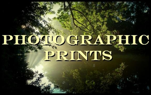 0684 alt vig photographic prints